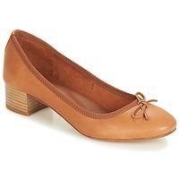 Zapatos Mujer Bailarinas-manoletinas André POETESSE Marrón