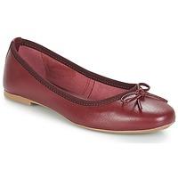 Zapatos Mujer Bailarinas-manoletinas André PIETRA Burdeo