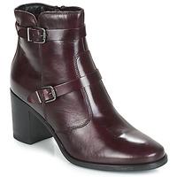 Zapatos Mujer Botas de caña baja André TORI Burdeo