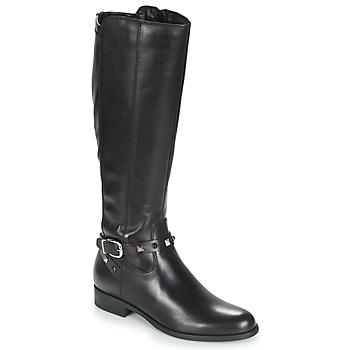 Zapatos Mujer Botas urbanas André TESS Negro