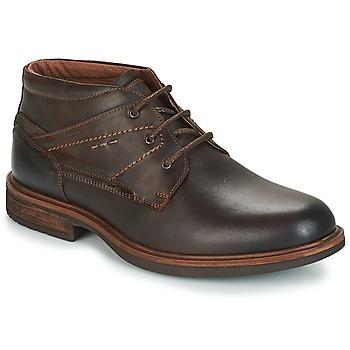 Zapatos Hombre Botas de caña baja André TYROL Marrón