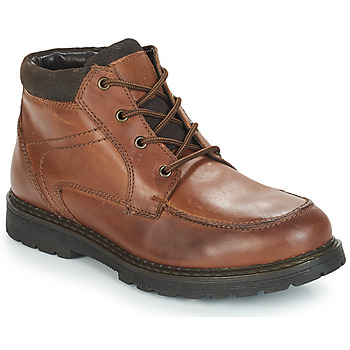 Zapatos Hombre Botas de caña baja André AREZZO Marrón