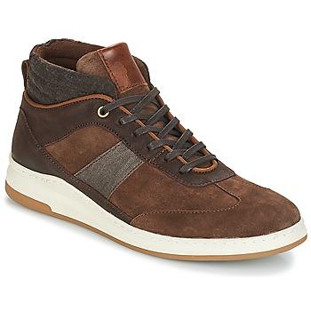 Zapatos Hombre Zapatillas altas André GLASGOW Marrón