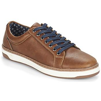 Zapatos Hombre Zapatillas bajas André NIELD Marrón