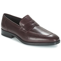 Zapatos Hombre Mocasín André MOC Burdeo