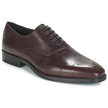 Zapatos Hombre Richelieu André DIAMOND Burdeo