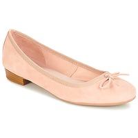 Zapatos Mujer Bailarinas-manoletinas André CINDY Beige
