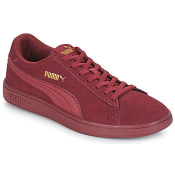 Zapatos Hombre Zapatillas bajas Puma SMASH V2 SD Burdeo