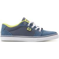 Zapatos Niño Zapatillas bajas DC Shoes DC Anvil ADBS300063-NVY azul marino