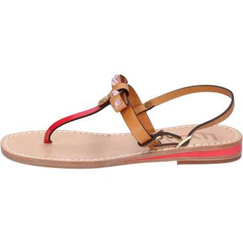 Zapatos Mujer Sandalias Eddy Daniele AX766 Marrón