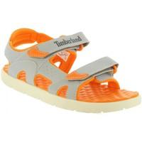 Zapatos Niños Sandalias Timberland A1QEQ PERKINS Gris