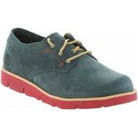 Zapatos Niño Zapatillas bajas Timberland A1M2C RADFORD Azul