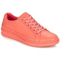 Zapatos Mujer Zapatillas bajas Timberland San Francisco Flavor Oxford Crabapple