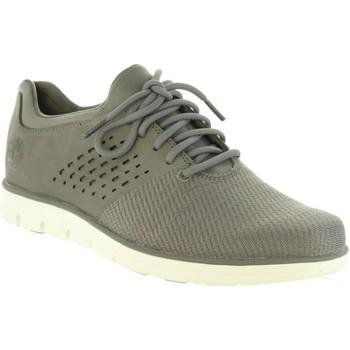 Zapatos Hombre Zapatillas bajas Timberland A1PE4 BRADSTREET Gris