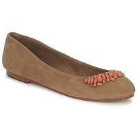 Zapatos Mujer Bailarinas-manoletinas Ambre Babzoe DUFFY Camel