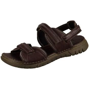 Zapatos Hombre Sandalias Josef Seibel Jim Marrón