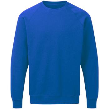 textil Hombre Sudaderas Sg Raglan Azul