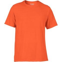 textil Hombre Camisetas manga corta Gildan 42000 Naranja