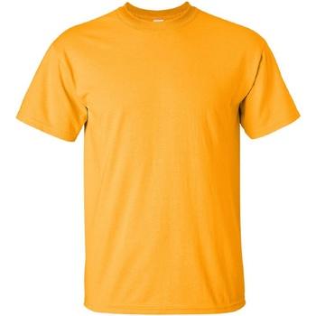 textil Hombre Camisetas manga corta Gildan Ultra Oro