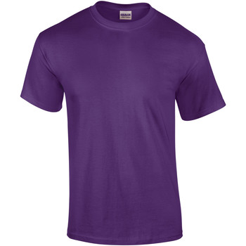 textil Hombre Camisetas manga corta Gildan Ultra Púrpura