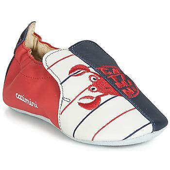 Zapatos Niño Pantuflas Catimini CALURA Marino / Rojo