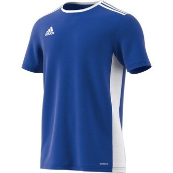 textil Hombre camisetas manga corta adidas Originals Entrada 18 Azul