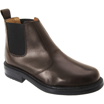 Zapatos Hombre Botas de caña baja Roamers  Marrón