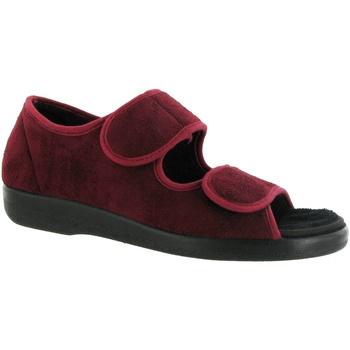 Zapatos Mujer Pantuflas Gbs BROMPTON ( MED) Vino