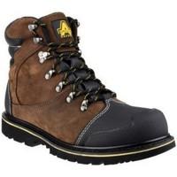 Zapatos Hombre Botas de caña baja Amblers 227 S3 WP Marrón