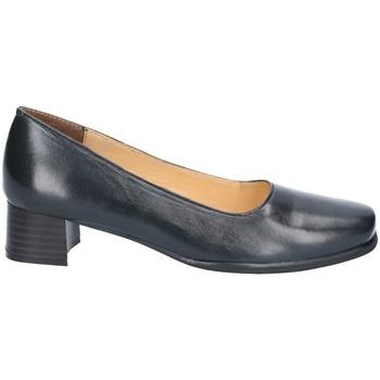 Zapatos Mujer Zapatos de tacón Amblers WALFORD SHOE X WIDE (BLACK/NAVY) Azul marino