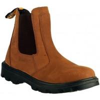 Zapatos Hombre Botas de caña baja Amblers FS131 SAFETY Marrón
